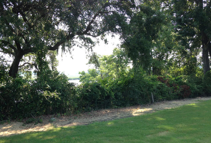 Factory-Creek-Park-Beaufort County Rural and Critical