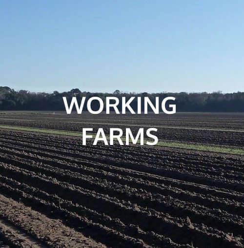 working farms