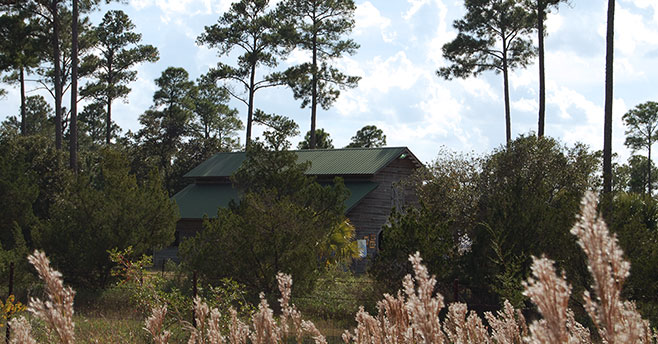 Widgeon-Point-Preserve-Beaufort County Rural and Critical