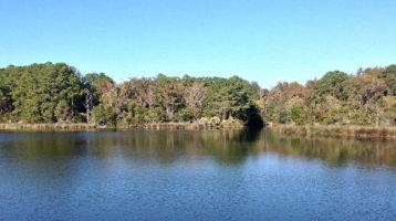 Crystal Lake Park-Center of Conservation