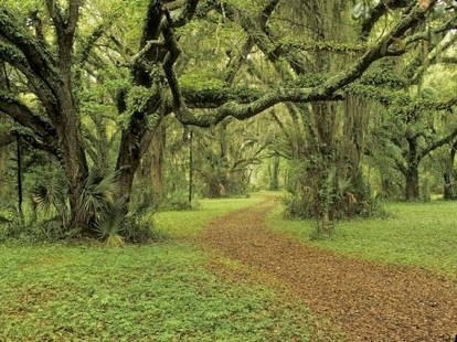 maps of Rural and Critical Protected Property | Beaufort County SC