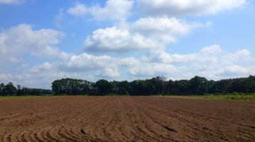 Partnering to Protect Farmland