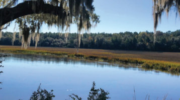 Calhoun Plantation's Family Farming Legacy