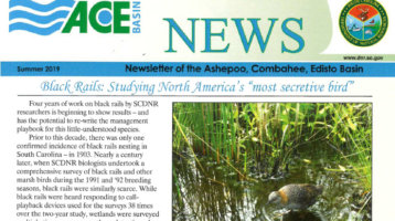 ACE Basin Summer 2019 Newsletter
